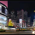 Shinjuku Night