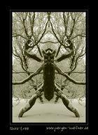 Shiva - Tree