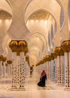 Shk. Zayed Mosque 04