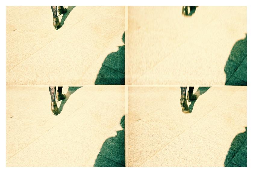 Shoe-Street-Self-Lomo