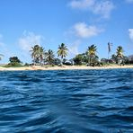 Shore Dive No.36 Windock (Bonaire )