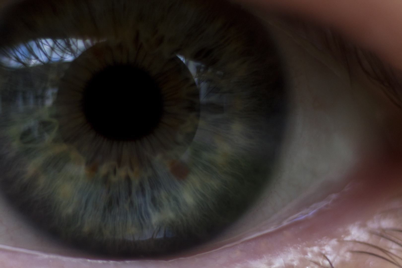 show me your eye