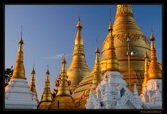~ ~ ~ Shwedagon Pagode ~ ~ ~