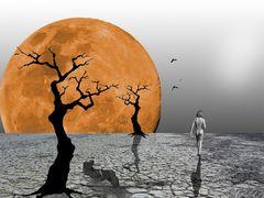 Si on allait voir .....ce qu'il y a derrière la lune