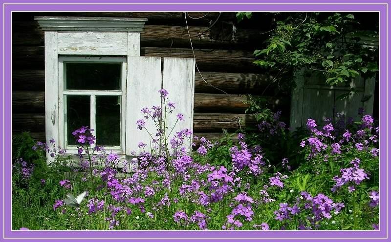 Sibirischer Garten.