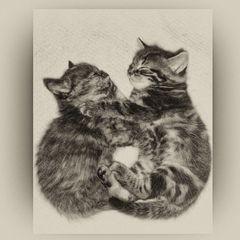 Siblings in love