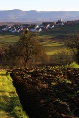 Sicht auf Altenriet