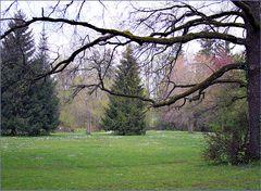 Sicht zu dem Park   -Vista al parque
