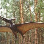 Sie sind wieder da , die Pterosaurier   !