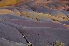 Siebenfarbige Erde