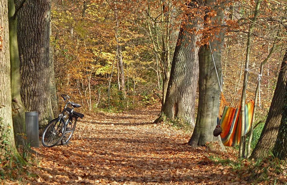 Siebenschläfer mit Fahrrad und Hängematte