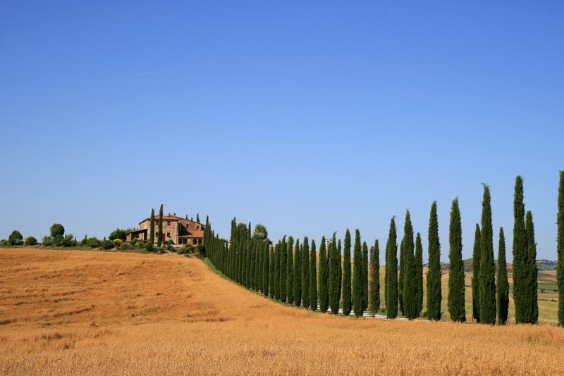 Siena--Bolsenasee