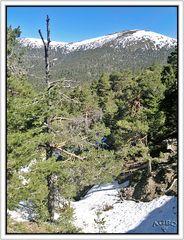 Sierra de Guadarrama, Madrid
