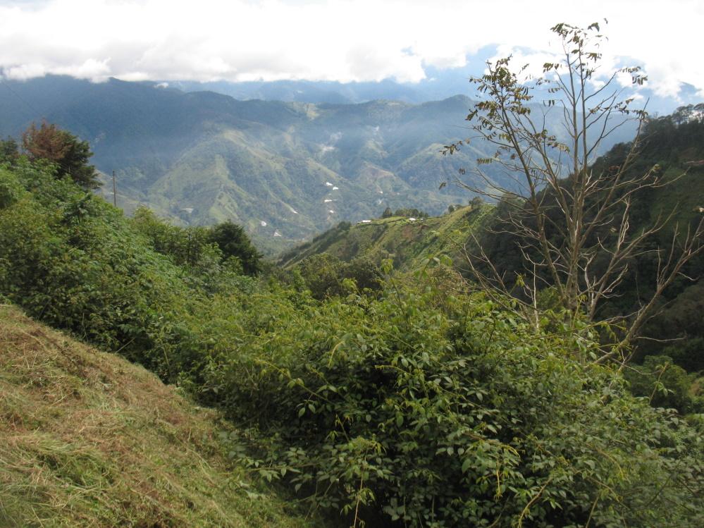 Sierra de Talamanca