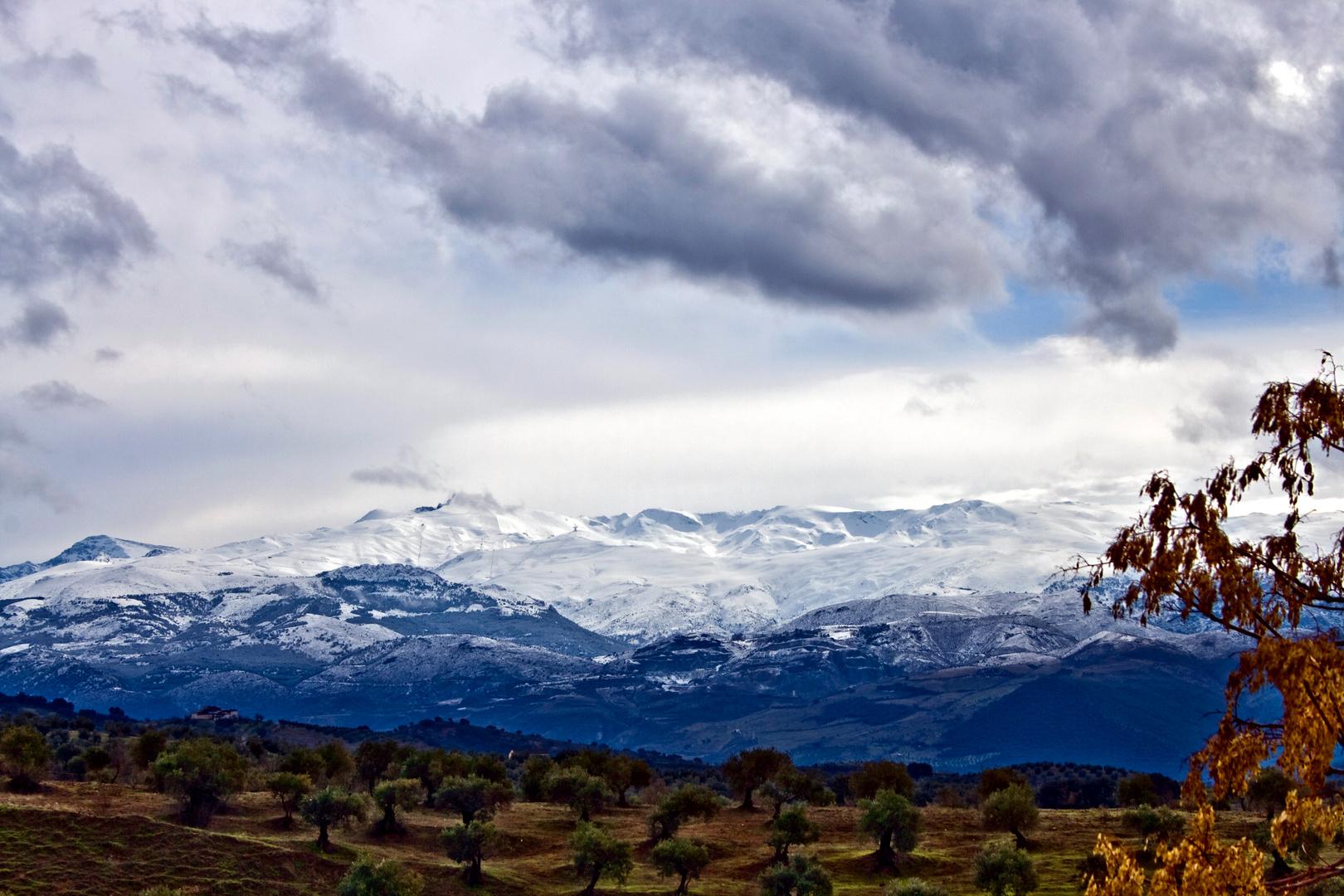Sierra Nevada (cara norte)