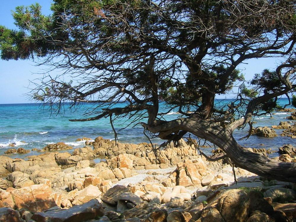 Siesta auf Sardinien