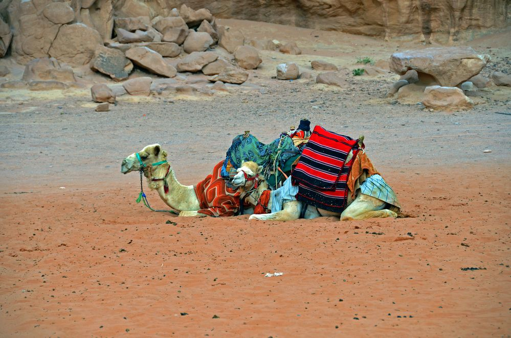 Siesta im Wadi Rum in Jordanien