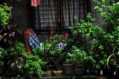 """ Siesta in Marikina "" , Manila"