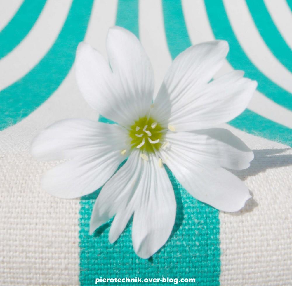 Sieste sur transat pour fleur fatiguée.