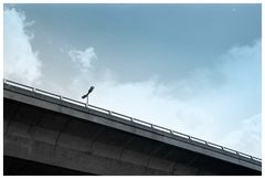 Sight of an elevated highway