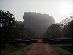 Sigiriya-Felsen im Morgennebel