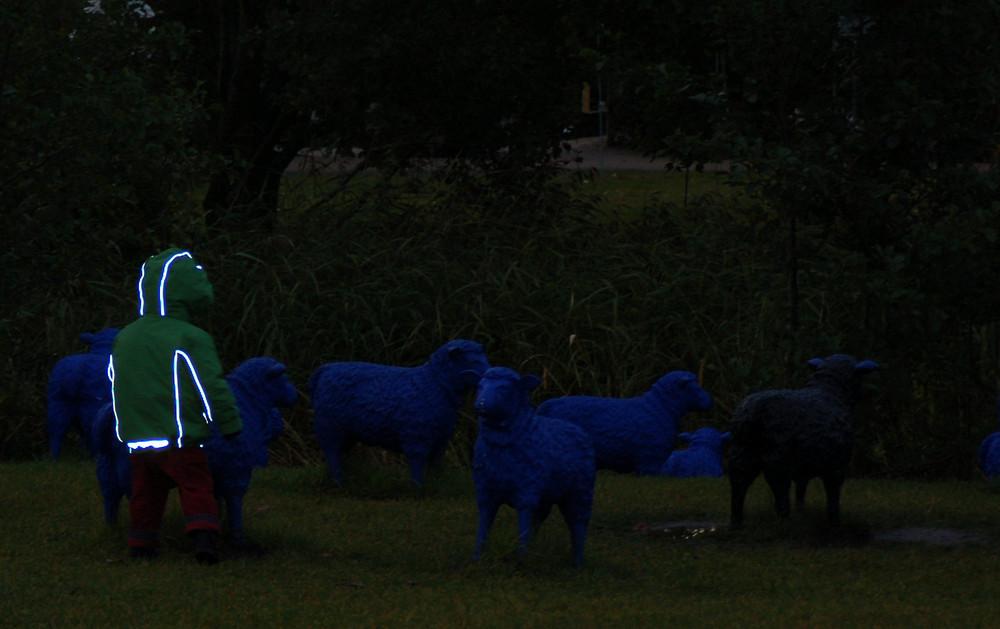 Signalwirkung oder Hüter der blauen Schafe
