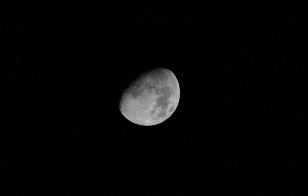 signora luna 2