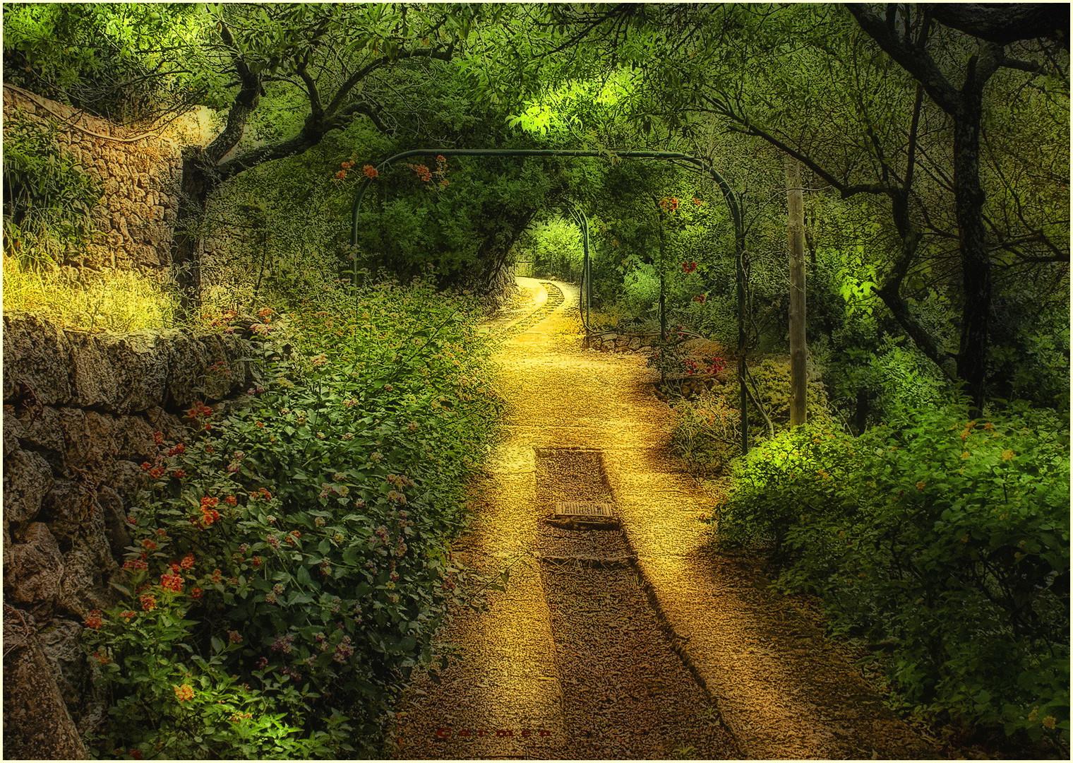 Siguiendo el camino...