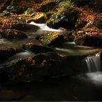Silberbach im Herbst2