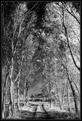 Silberweg