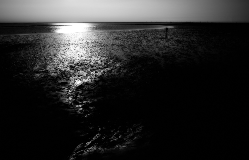 silence of loneliness