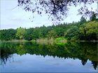 Silence of natura