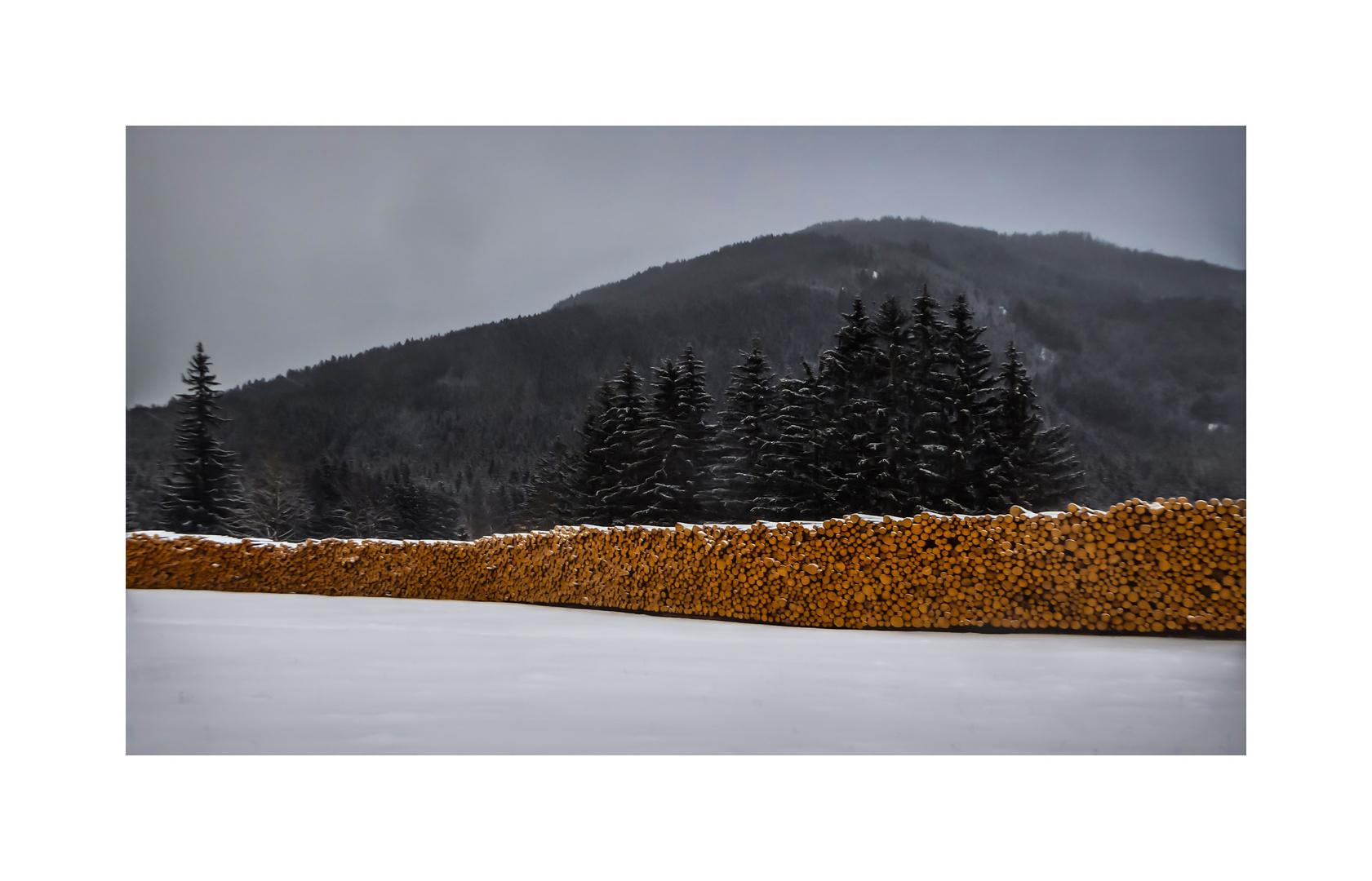 silence.of.winter