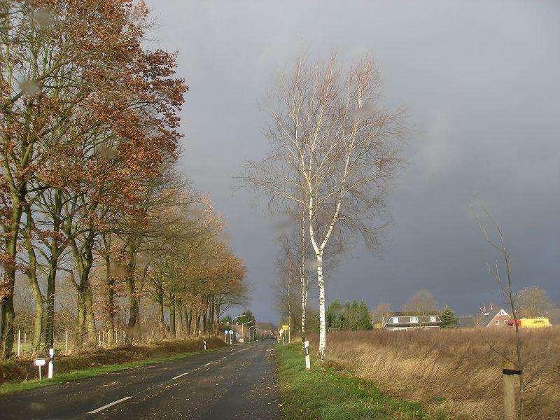 Silvester 06 in Hohenlockstedt