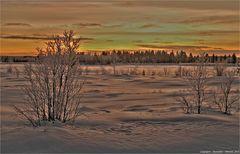 Silvester Polarnacht