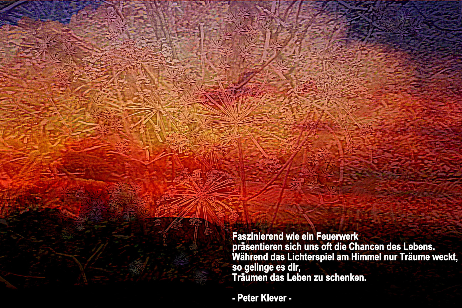 Silvesterfeuerwerk - Peter Klever