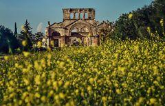 Simeonkloster in Ad Dana, Syrien. 120_3745