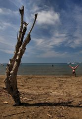 similitudini da spiaggia
