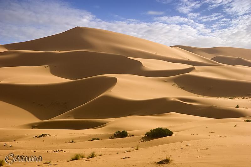 simplemente, el desierto...