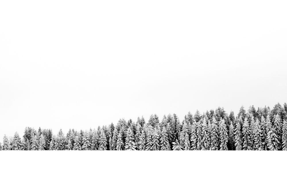 [ simplicity II ]