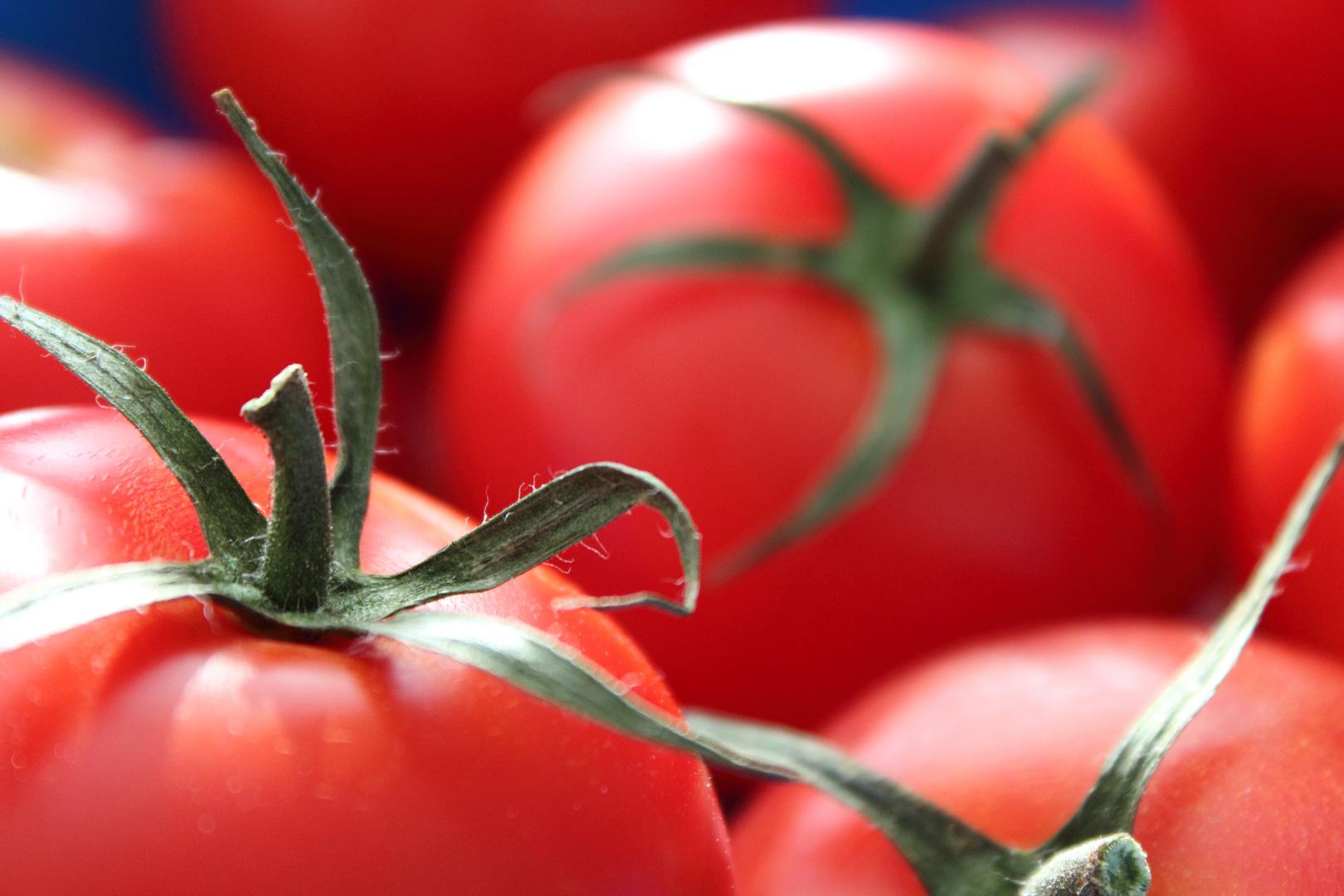 Simply Tomato
