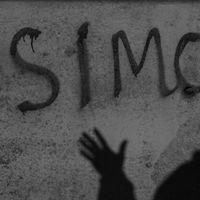sim_sim