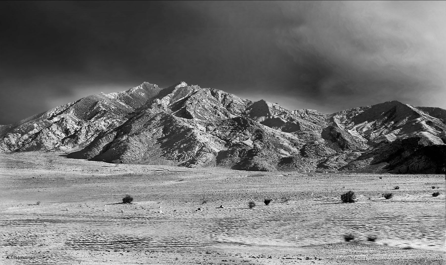 Sinai desert 2