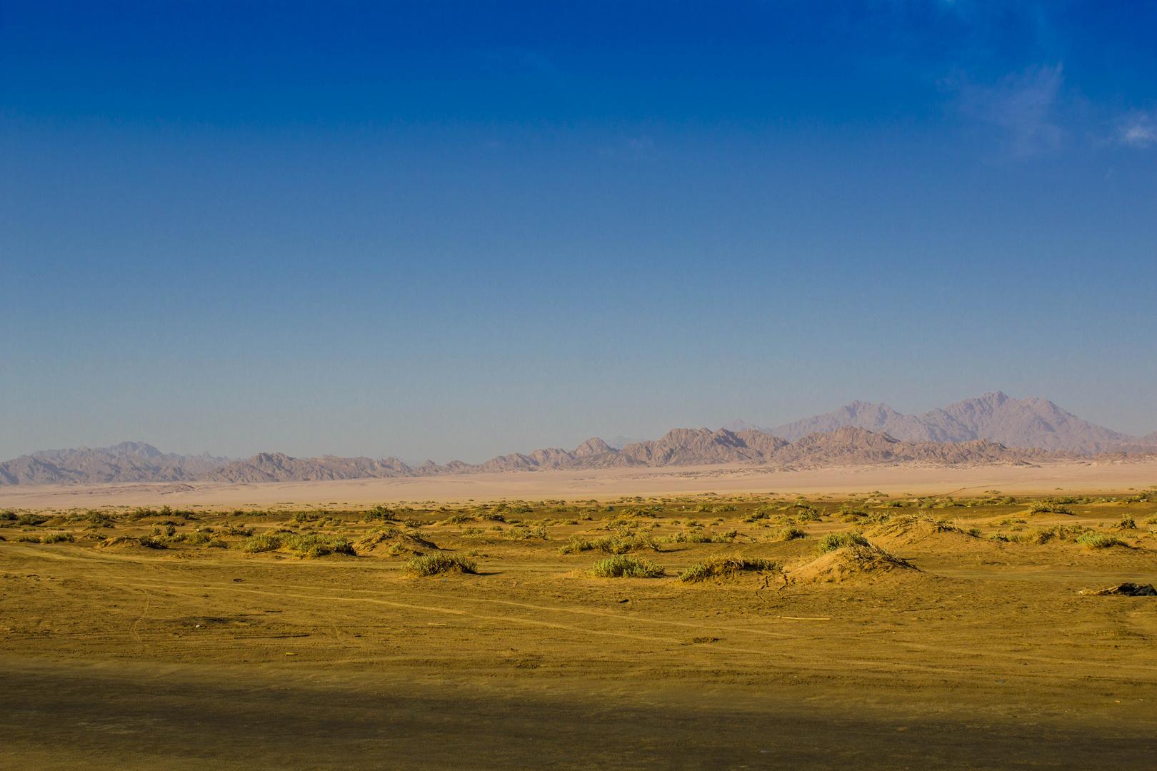 Sinai Deserts