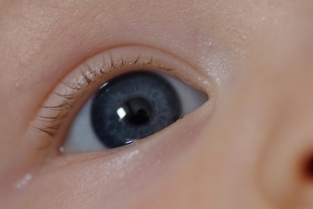 Sind so kleine Augen...