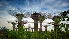 singapore - modern architecture - no1