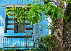 Singapur 7