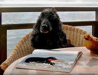 Sir Tobys diario 2007