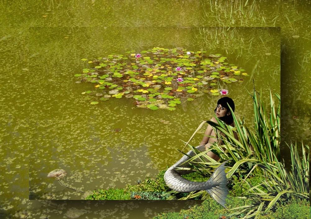 Sirena de agua dulce