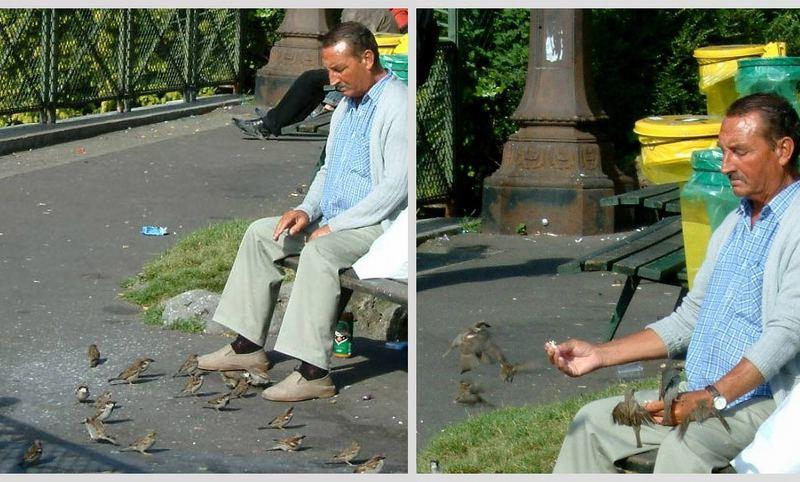 sitting with birds
